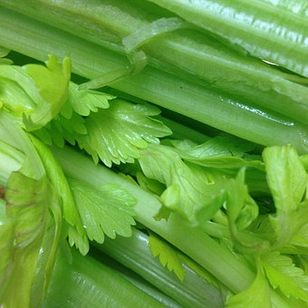 Celery . . . the most underrated veggie