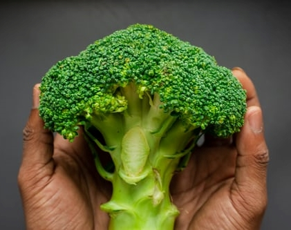 The connection between estrogen and broccoli